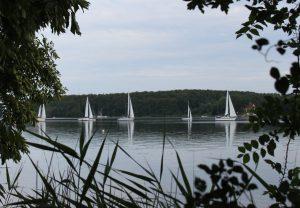 sommer-efteraar-2013-097-3